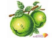 """Картина стразами """"Зеленые яблоки"""""""